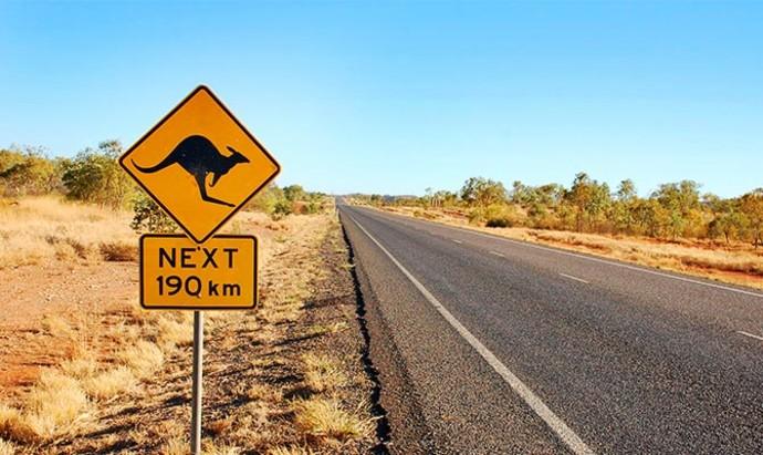 kangaroo road sign