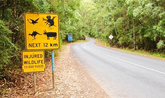 graffiti on a road sign in Australia