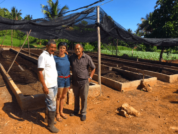 Guest Anna visits Almar, home to one of the largest organicoponicos in Havana