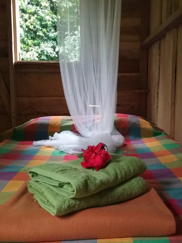 Room with loft and shared veranda