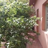 Marokko Wohnen auf Zeit in Marrakesh, Marrakesh