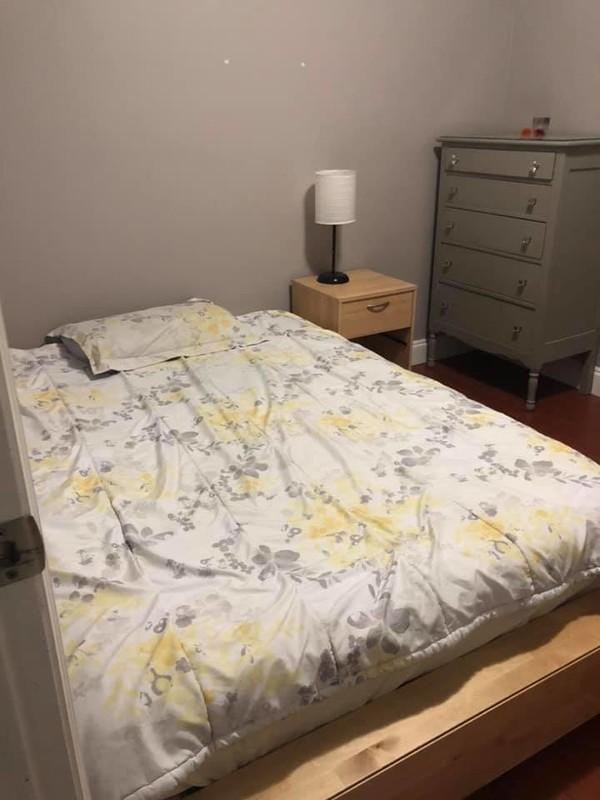 Room in basement with hardwood floor