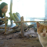 ThailandMae Wang的Samart寄宿家庭
