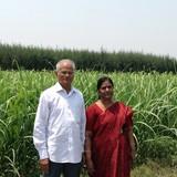 Famille d'accueil à en route Wallajah to Sholingur, Vellore, India