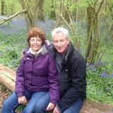 Família anfitriã em Ferndown, Ferndown , United Kingdom