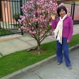 Host Family in La Pampa, La Serena, Chile