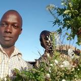 Família anfitriã Ezra em Syokimau, Kenya