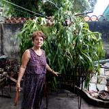 Cubaplaya, la habana的房主家庭