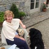 Famille d'accueil à Tinryland , Carlow, Ireland
