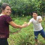 Famille d'accueil à aum hum homestay and organic farm, Fang, Chiang Mai, Thailand