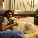Alloggio homestay con Leanne in Sans Souci, Australia