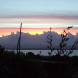 Homestay-Gastfamilie Lenora in North Shore, Auckland, New Zealand