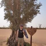 United Arab EmiratesMarina walk , Dubai的房主家庭